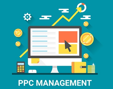 Do you need a PPC management expert?