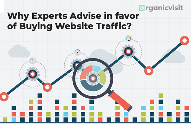 Why Experts Advise in favor of Buying Website Traffic?