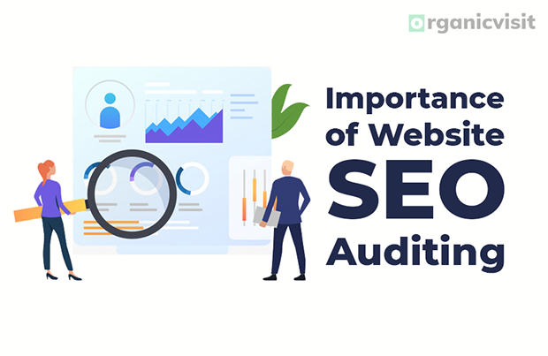 Importance of Website SEO Auditing